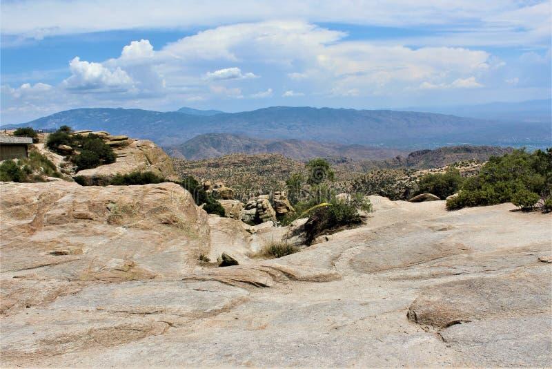 登上莱蒙,圣卡塔利娜山,科罗纳多国家森林,图森,亚利桑那,美国 免版税图库摄影