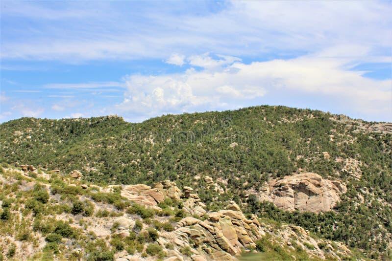 登上莱蒙,圣卡塔利娜山,科罗纳多国家森林,图森,亚利桑那,美国 库存图片