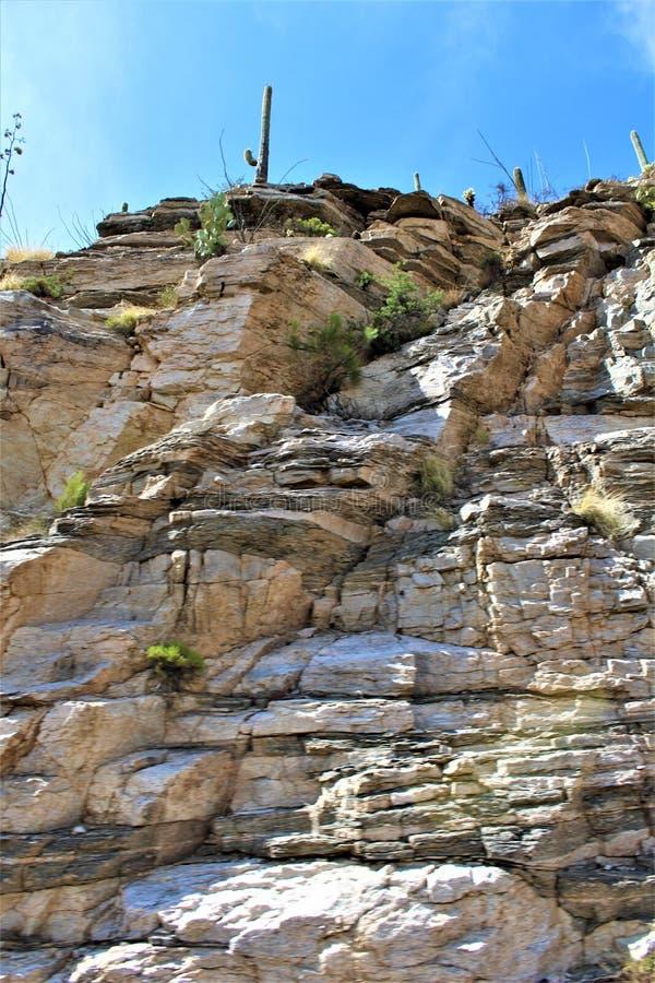 登上莱蒙,圣卡塔利娜山,科罗纳多国家森林,图森,亚利桑那,美国 免版税库存照片
