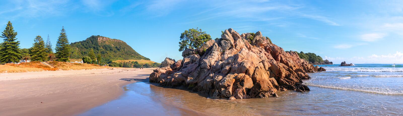 登上Maunganui海滩在早晨阳光下,陶朗阿,新西兰 免版税库存图片