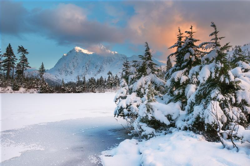 登上Shuksan和Picture湖在贝克原野 库存图片