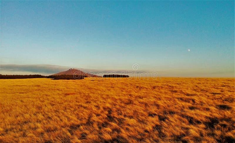 登上Snezka -捷克共和国的峰顶 免版税图库摄影