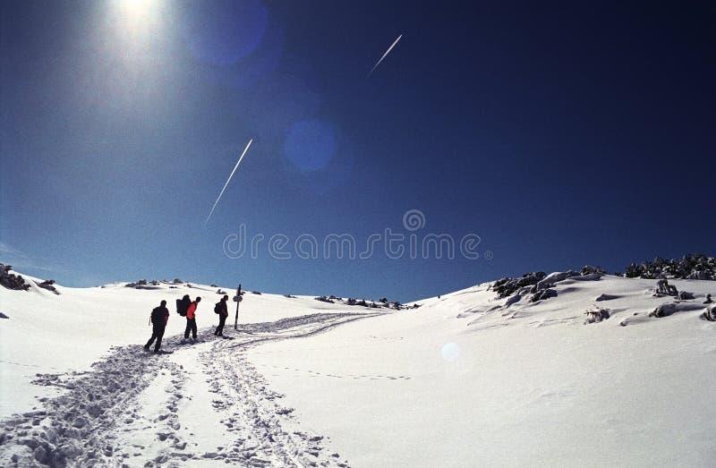 登山人furnica峰顶 库存照片