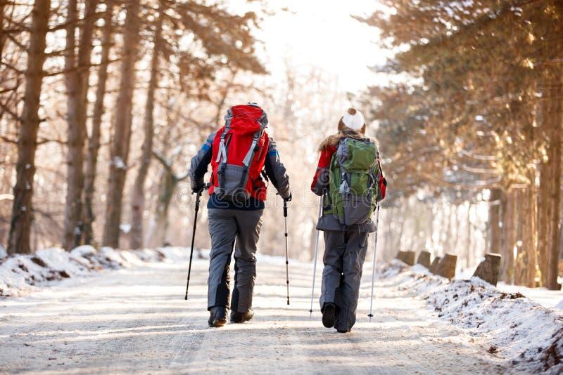 登山家夫妇行动的在森林里 图库摄影