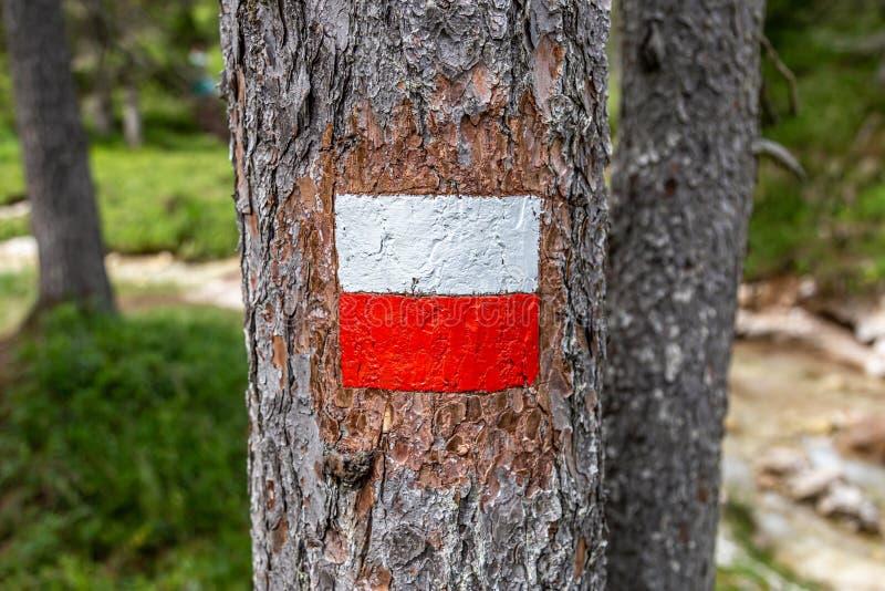 登山'Gores de Federa'的路标 免版税库存图片
