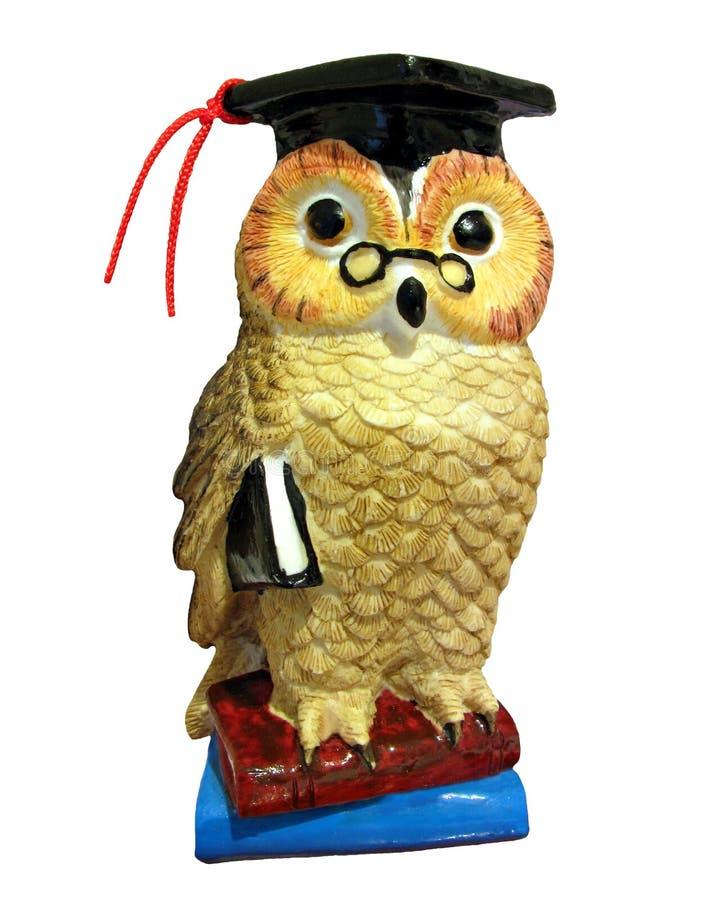 登记明智的猫头鹰 皇族释放例证