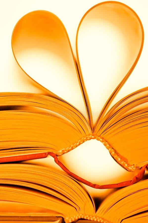 Download 登记重点 库存照片. 图片 包括有 开放, 钉书匠, 读取, 黄色, 蓝蓝, 教育, 华伦泰, 情绪, 纸张 - 22356716