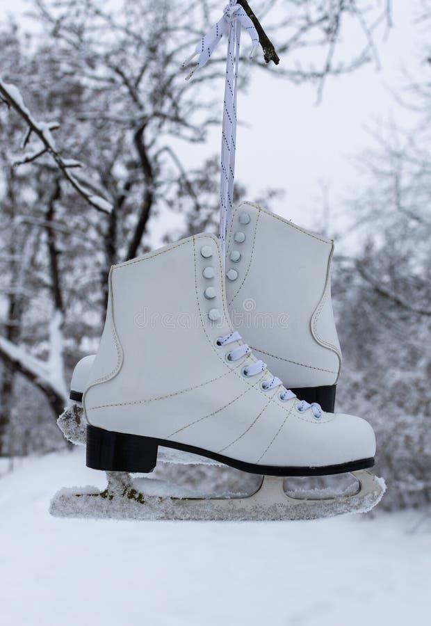 白人妇女的滑冰 库存照片
