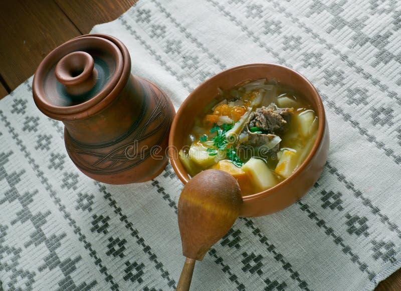 白俄罗斯语传统汤 库存照片