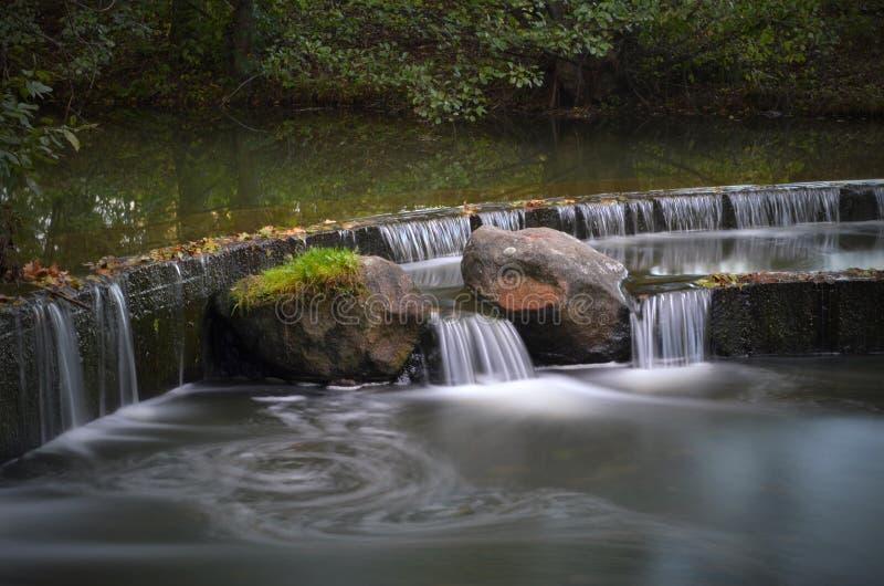 白俄罗斯,米斯克:森林公园鹅口疮(Drozdy),秋天落 关闭 库存照片