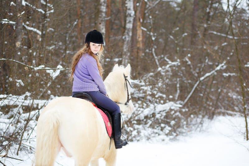 白变种马的年轻车手女孩在冬天森林里 免版税库存图片