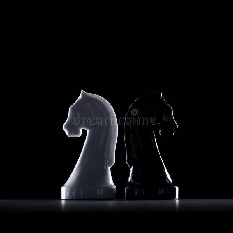 白和黑人棋骑士剪影  图库摄影