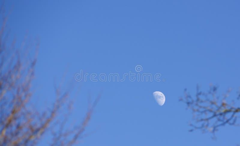 白天月亮 图库摄影
