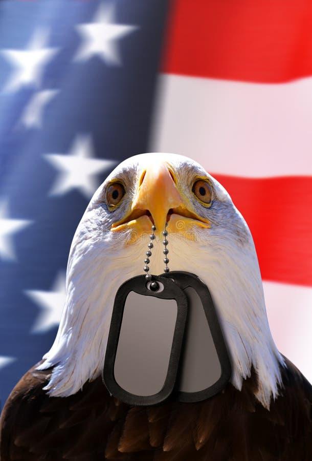 白头鹰拿着在他的额嘴的卡箍标记,在背景美国国旗 免版税图库摄影