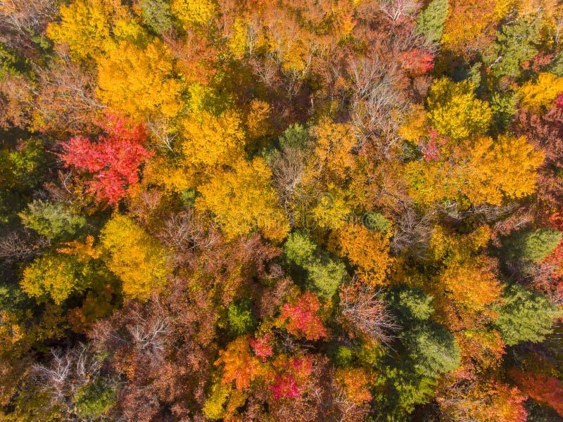 白山国家森林航空视图,美国新罕布什尔 免版税库存图片