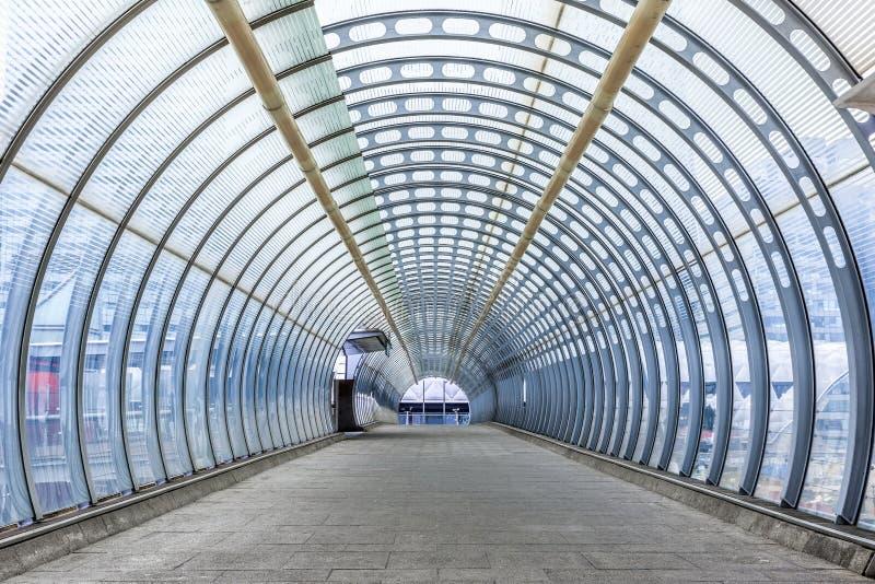 白杨树步行者人行桥 免版税库存图片