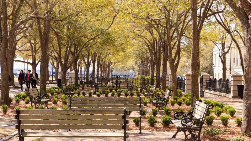 白栎木庭院,巴特里公园,查尔斯顿南卡罗来纳 免版税库存照片