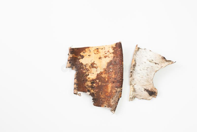 白桦树皮片断在白色背景的 安置文本 免版税库存照片
