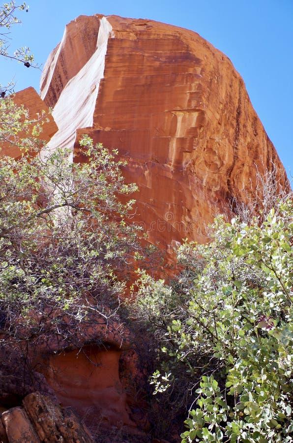 白棉布坦克,红色岩石保护地区,内华达南部,美国 免版税库存照片