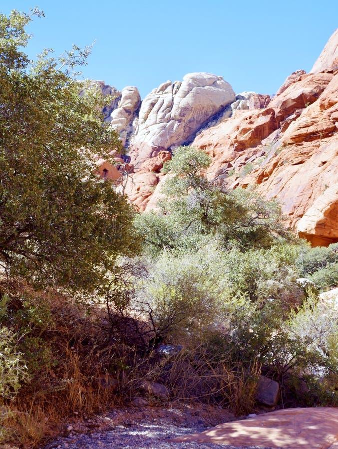 白棉布坦克,红色岩石保护地区,内华达南部,美国 免版税图库摄影