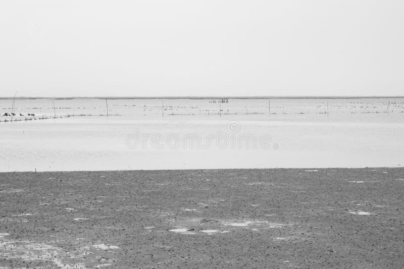 黑白海背景 免版税图库摄影