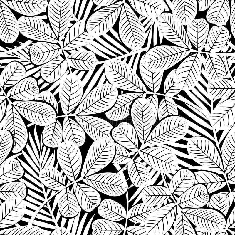 黑白热带木槿花和植物无缝的pa 向量例证