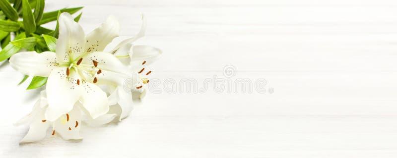 白百合花束在一张白色木背景顶视图的 开花百合美丽的花束白花 免版税库存图片