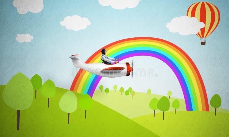白皮书飞机的飞机飞行员 库存图片