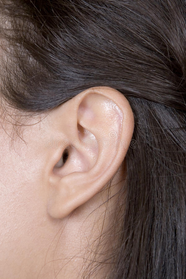 白种人特写镜头耳朵妇女年轻人 库存图片