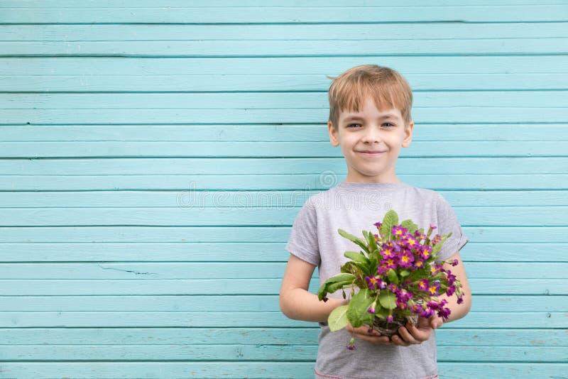 白种人男孩以蓝色墙壁为背景的少年从有c幼木花束的老委员会  免版税库存照片
