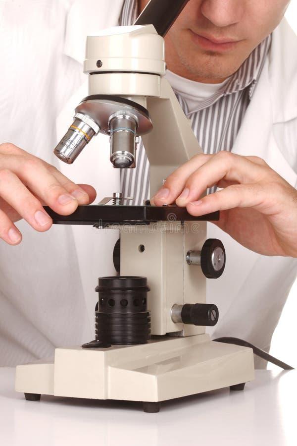 白种人科学家在使用科学方法的工作 免版税库存照片