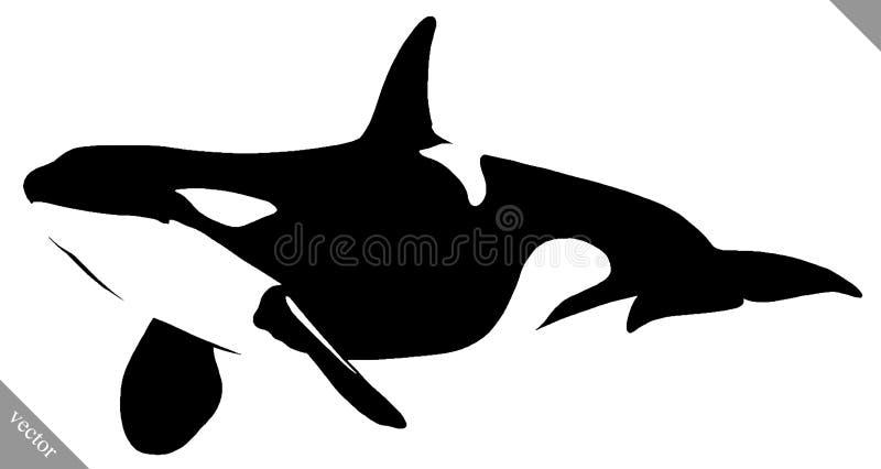 黑白线性油漆凹道虎鲸例证 皇族释放例证