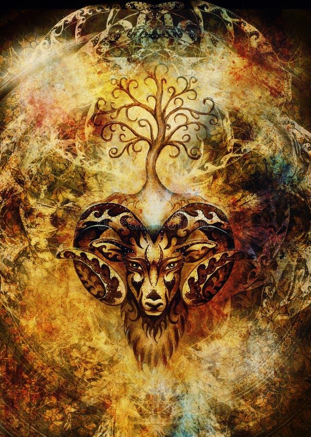 白羊星座、神圣的动物标志和生物演化谱系图解装饰绘画  库存照片