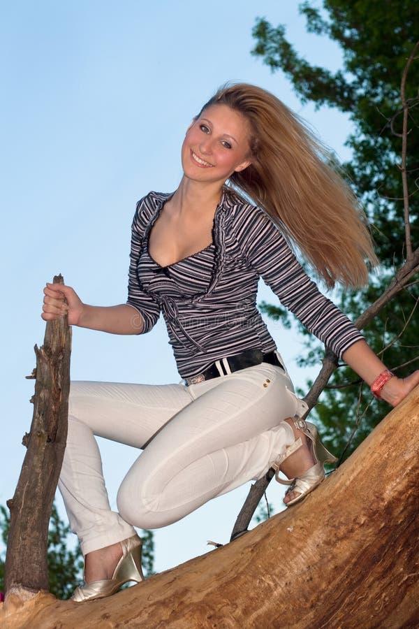 白肤金发的分行坐的结构树 免版税库存图片