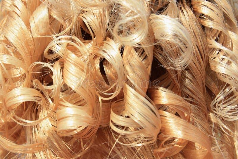 白肤金发的卷发 免版税图库摄影