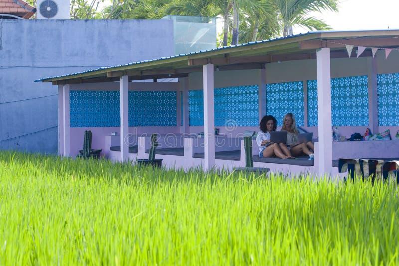 白肤金发的在网上工作与便携式计算机一起的妇女和拉丁混杂的女孩户外在米领域前面作为数字式游牧人星期五 库存照片