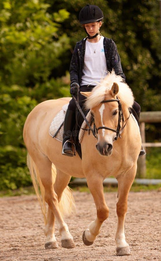 白肤金发的女孩小马乘驾 免版税库存图片