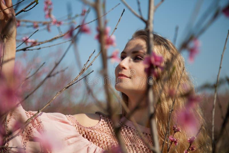 白肤金发的女孩走庭院开花的桃子 库存图片
