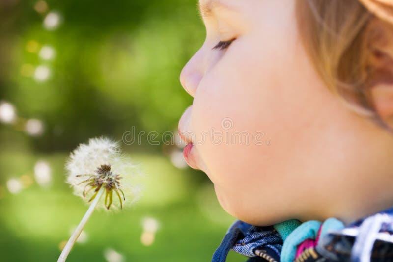 白肤金发的女婴在蒲公英花吹 免版税图库摄影