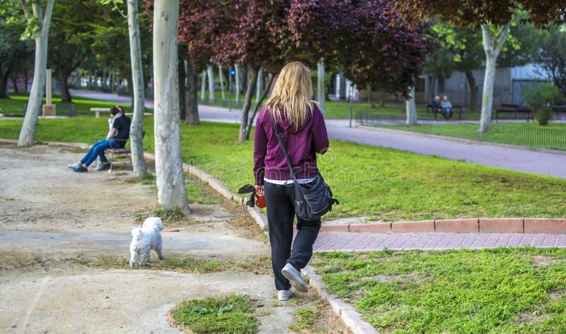白肤金发的妇女采取她的步行的狗与在公园的一条狗皮带 库存照片