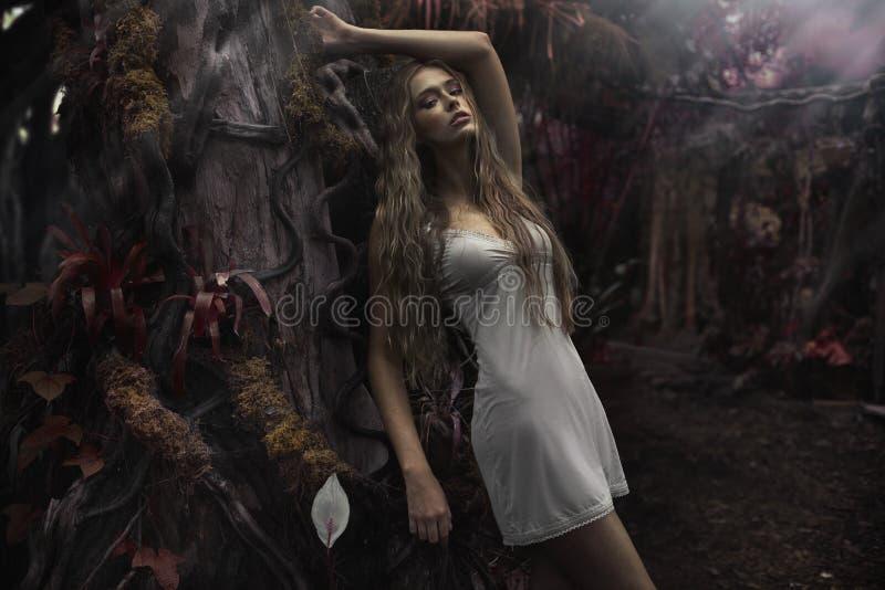 年轻白肤金发的妇女画象在仙境 库存照片