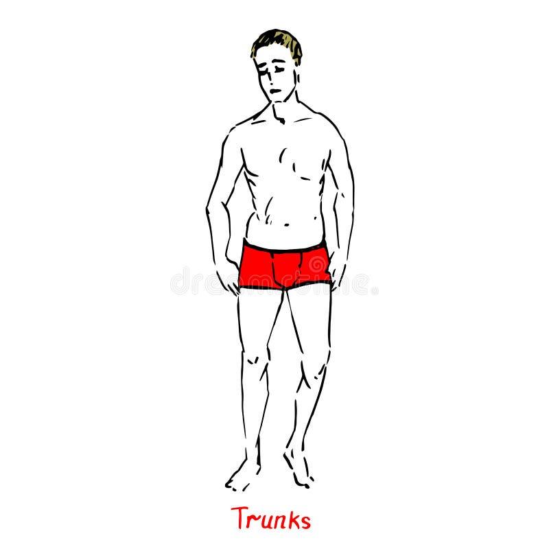 白肤金发的性感的人画象泳装的红色树干类型的有题字的,手拉的概述乱画,剪影传染媒介 向量例证