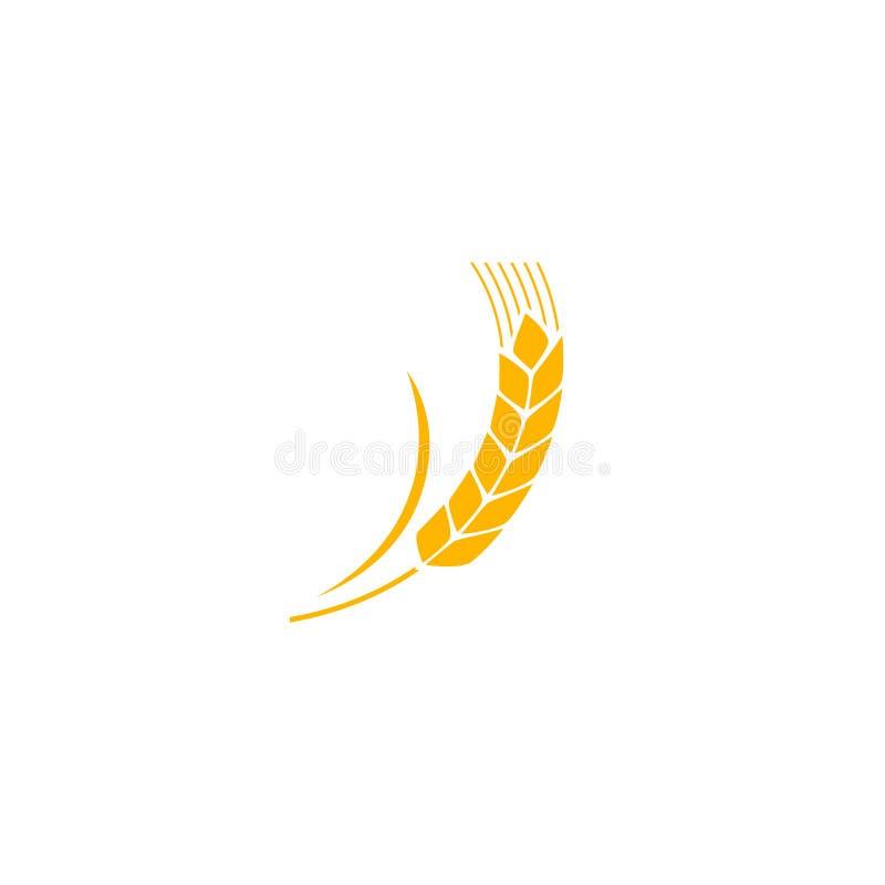 白背景小麦穗黄分离 谷物植物轮廓 Spica图标 耳朵有机 平 库存例证