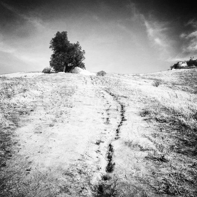 黑白自然山Mt Rubidoux 免版税库存照片
