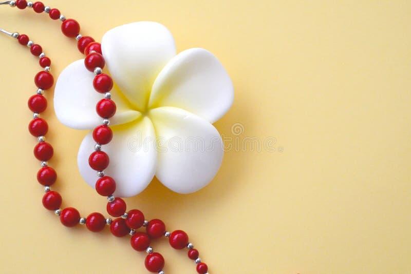 白色与黄色花和明亮的红珊瑚小珠与银色口音在黄色背景 库存照片