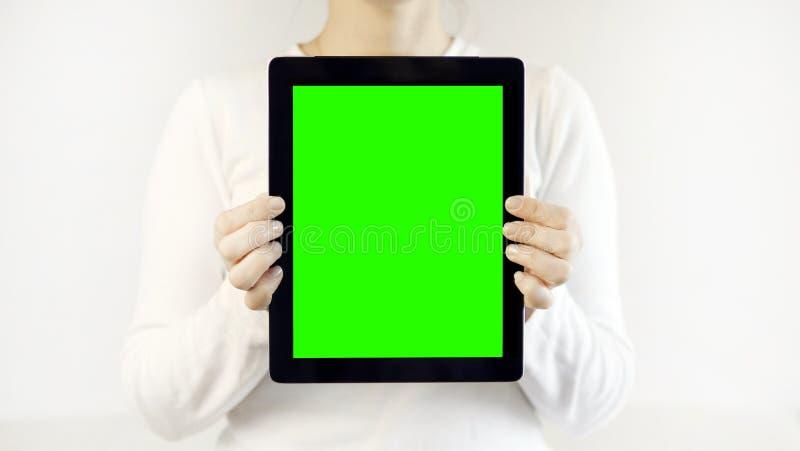 白色举行的片剂个人计算机的妇女 库存图片