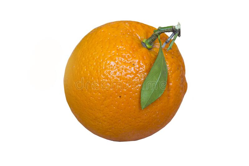 白色分离的橙子 背景鲜橙 神奇的橙子 免版税库存照片