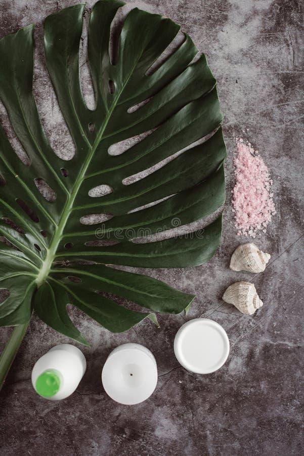 白色化妆品、海盐和绿色叶子在灰色具体背景 免版税库存照片
