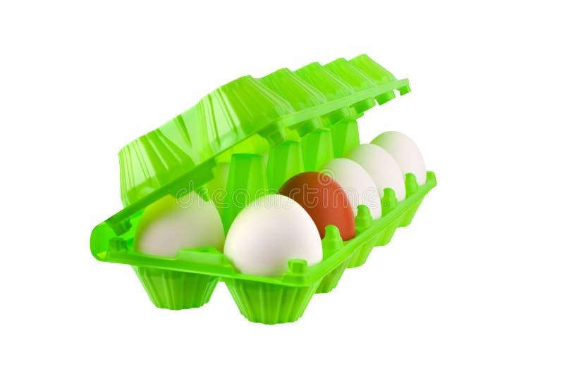 白色十二个的鸡蛋和一个棕色或红色在白色背景被隔绝的关闭的开放绿色塑料包裹  免版税库存图片