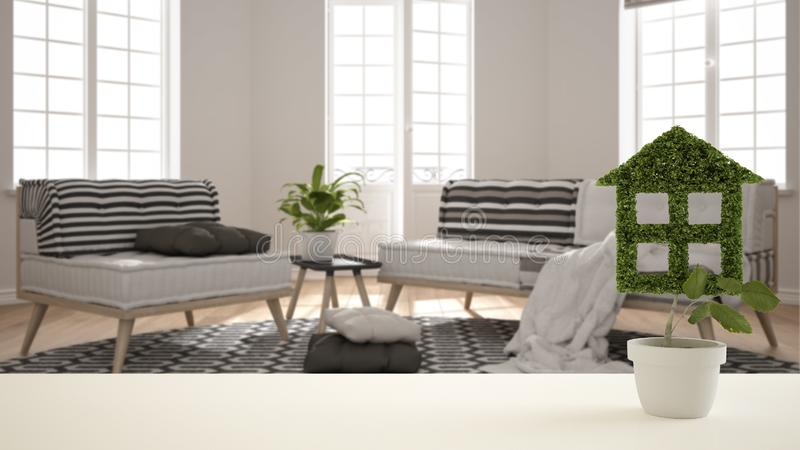 白色台式或架子与绿色植物罐的被塑造象房子,现代被弄脏的客厅背景,室内设计,真正 免版税库存图片